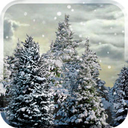 Snowfall Free Live Wallpaper App by Kittehface Software