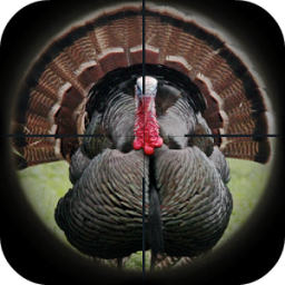 Turkey Hunting Calls App by Ape X Apps 333