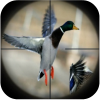 Duck Hunting Calls App by Ape X Apps 333