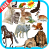 Animal Sounds app by berzanov