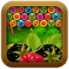 Berries Farm app by Dialekts