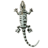 Lizard App by Dmitsoft