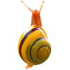 Snail app by Dmitsoft