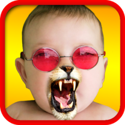 Face Fun - Photo Collage Maker App by Kaufcom Games Apps Widgets