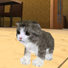 Kitten Cat Simulator 3D Craft App by Patrick König