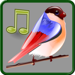 Birds Sounds Relax and Sleep App by Zodinplex