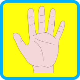 Human Body Parts for Kids App by Zodinplex