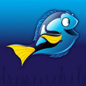 The Salty Box ReefStats Local App by jrob3rts