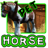 Horse Pet app by Pets Grude