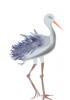 +animal+waterbird+generic+ clipart