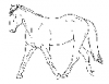 +animal+mammal+horse+trot+sketch+ clipart