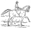 +animal+mammal+horse+woman+side+saddle+ clipart