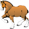 +animal+ungulate+mammal+Equidae+horse+Clydesdale+ clipart