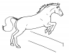+animal+ungulate+mammal+Equidae+horse+jumping+fence+ clipart