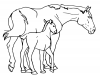 +animal+ungulate+mammal+Equidae+horse+mare+and+foal+ clipart