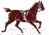 +animal+ungulate+mammal+Equidae+horse+no+rider+ clipart