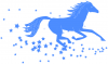 +animal+ungulate+mammal+Equidae+horse+running+in+stars+blue+ clipart