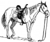 +animal+ungulate+mammal+Equidae+horse+saddled+ clipart