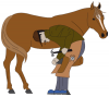 +animal+ungulate+mammal+Equidae+shoeing+horse+ clipart