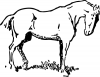 +animal+ungulate+mammal+Equidae+small+eyed+horse+ clipart