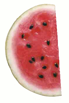 fruit food produce watermelon half slice  clipart