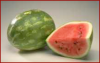 +fruit+food+produce+watermelon+1+ clipart